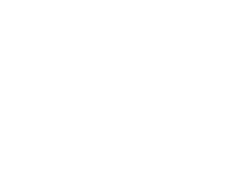 Handsome Studio